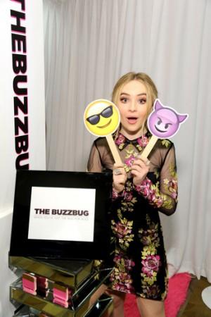 2C (BuzzBug)