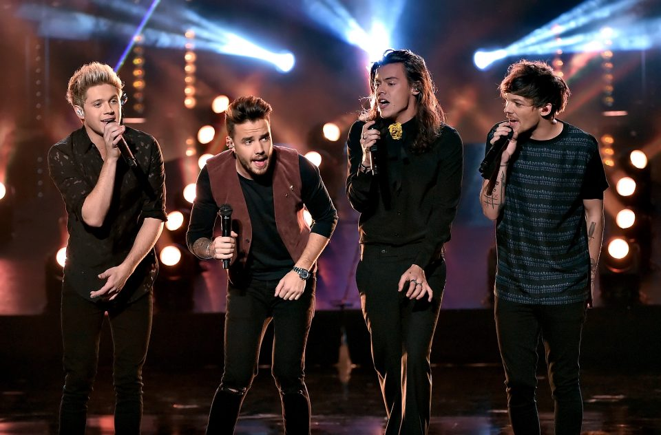QUIZ: What Will the 1D Guys Love Most About You?