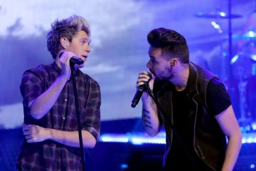 Niall Horan and Liam Payne Reunited at an Indiana Concert!