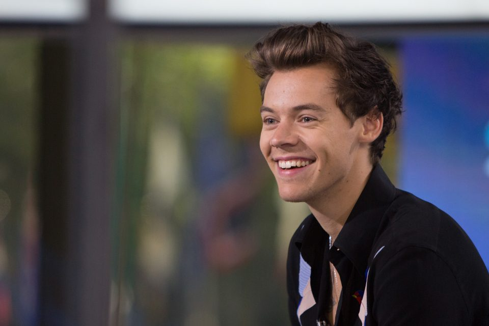 Harry Styles Makes a Wish to Host the 'Tonight Show'