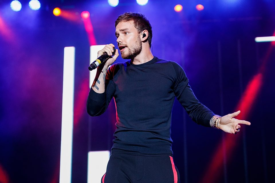Liam Payne Puts His Own Spin on 'The Middle'