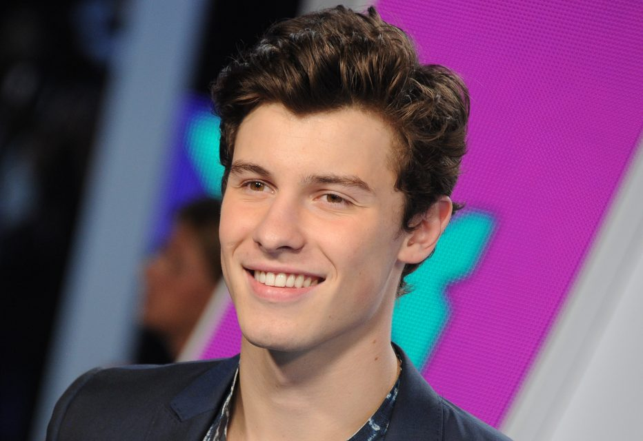 Shawn Mendes Wrote a Song Confessing His Feelings for Someone