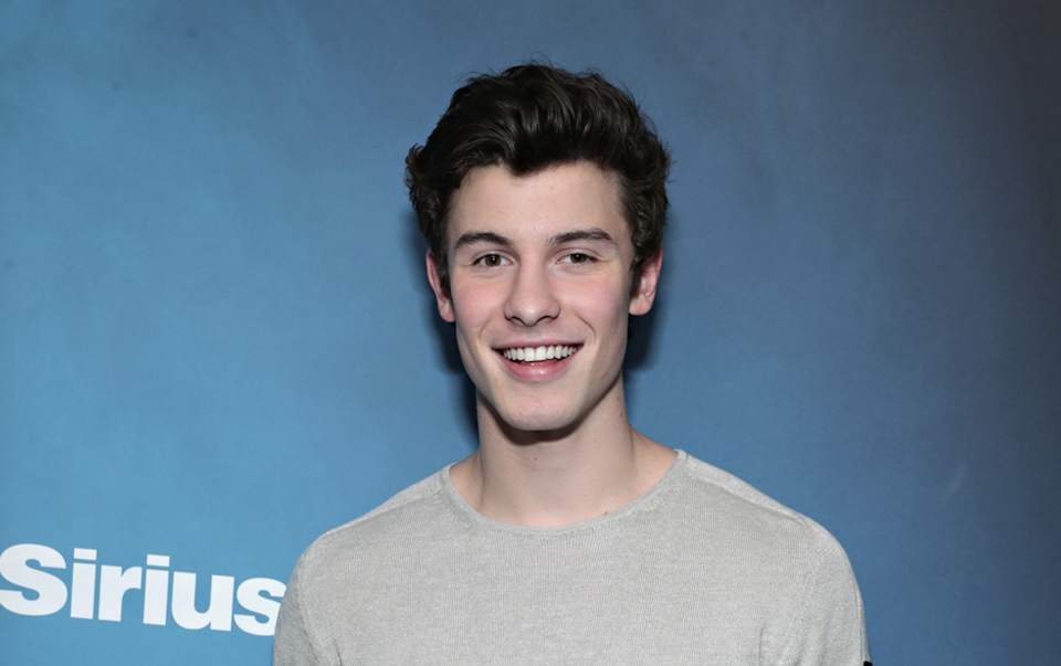 Shawn Mendes Lends Helpful Advice to British Artist HRVY