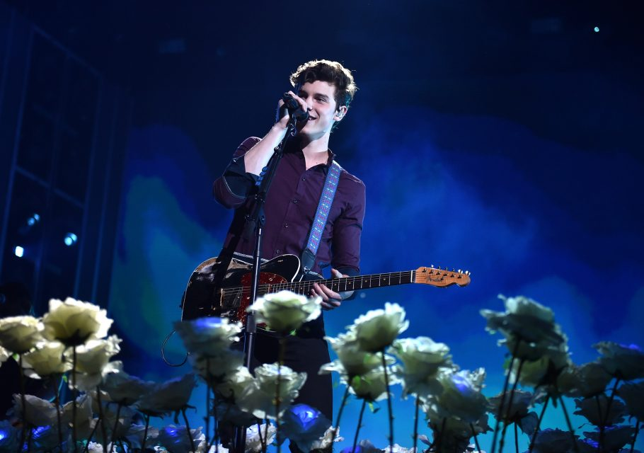 Shawn Mendes, Johnny Orlando And More Nominated For iHeartRadio's Much Music Video Awards: See The Full List