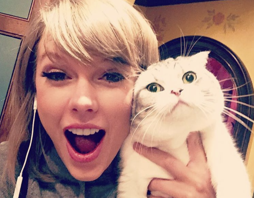 5 Times We Obsessed Over Taylor Swift's Cats