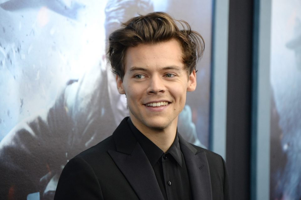 Harry Styles Set To Co-Chair 2019 Met Gala