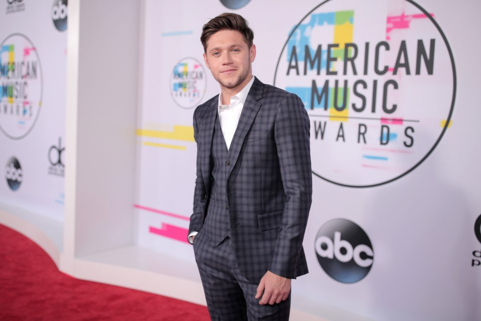 Niall Horan Dishes on the Hilarious First Time He Met Camila Cabello
