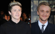 Tom Felton as Niall Horan